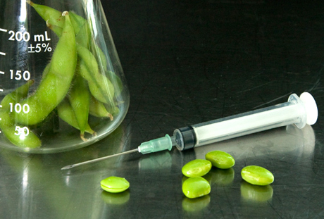 Genetically-Modified-Soybeans1